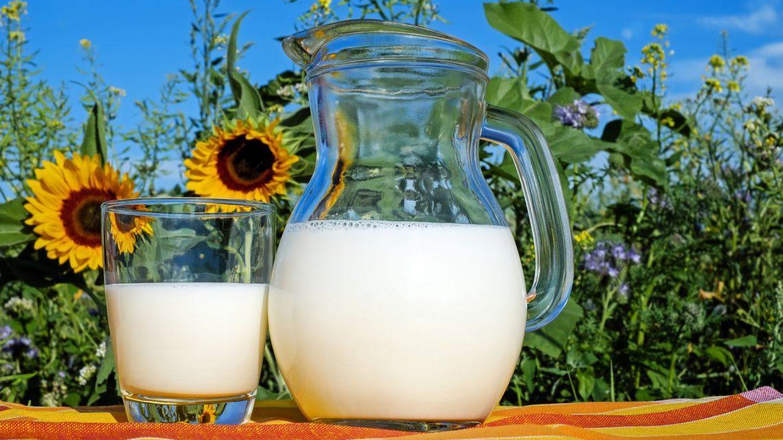 Régalez-vous avez des produits laitiers sains