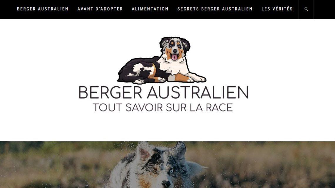 Adopter un berger australien