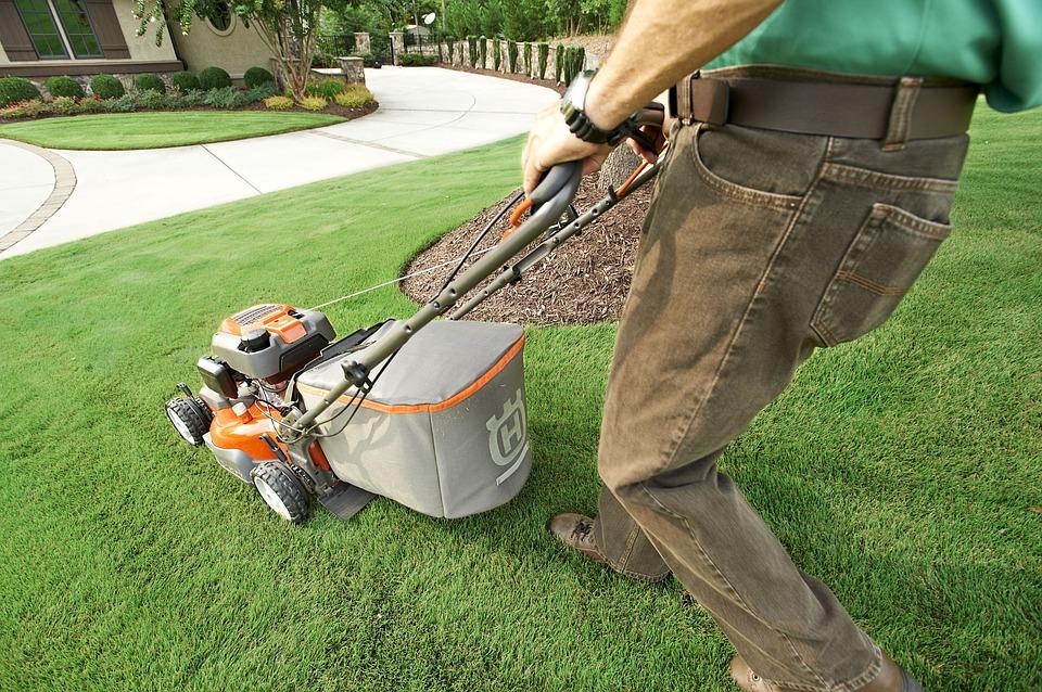Choisir ses outils de jardinage avec Mister Jardin
