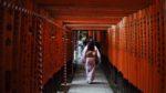 Femme marchant dans les portes de Torii